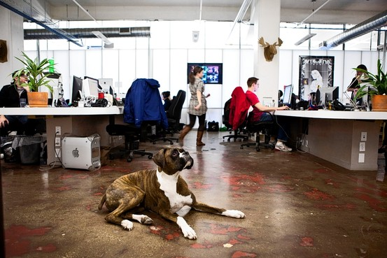 Open Office Space at the Big Spaceship, NY