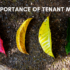 Importance Of Tenant Mix In Commercial Real Estate