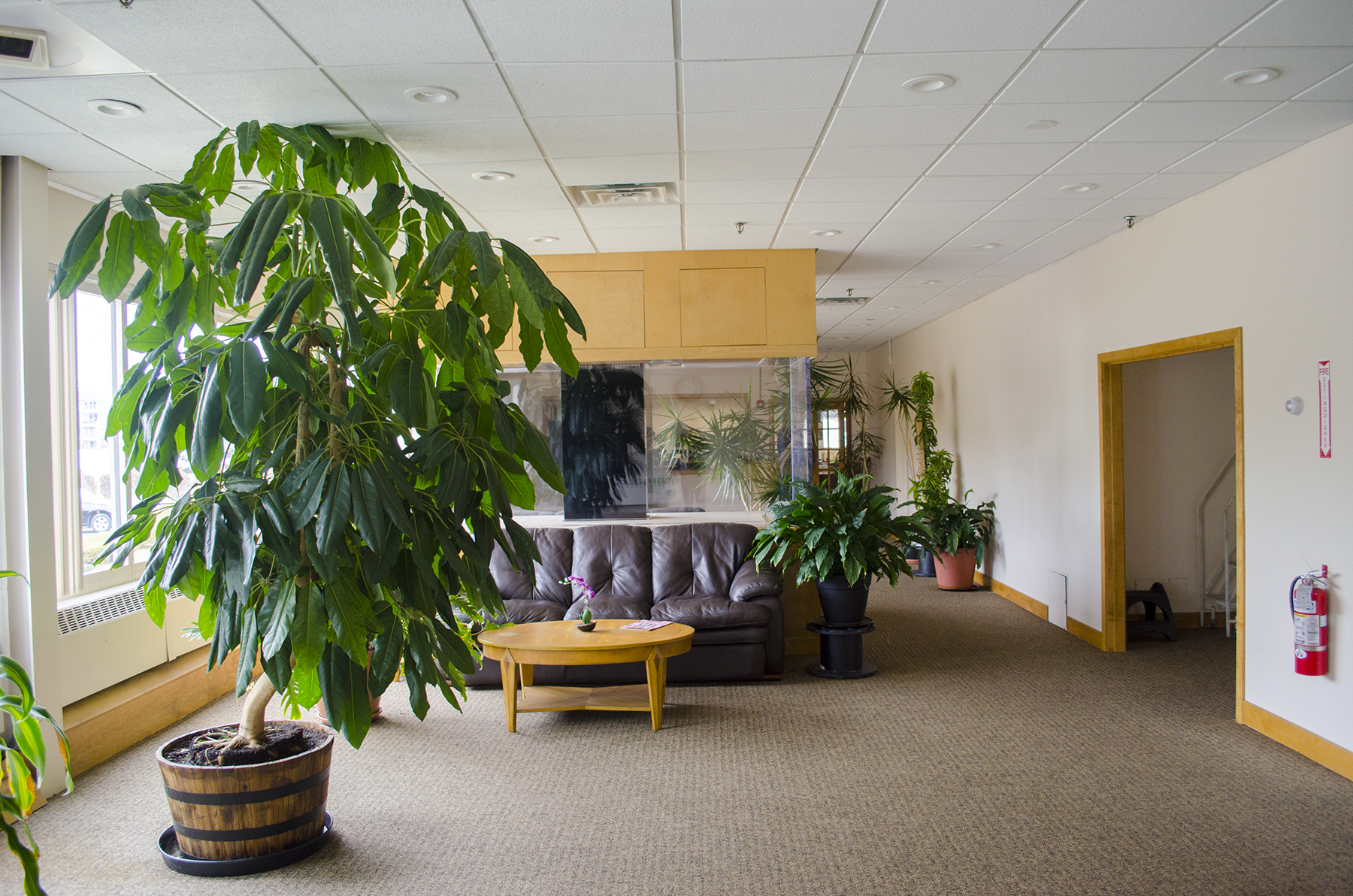 Office/Lab/R&D Space For Lease in Watertown